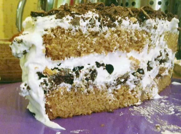 smores-cake-innards
